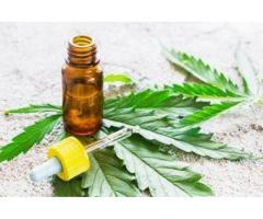 https://donlemoncbdoil.wixsite.com/don-lemon-cbd-oil