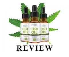 Put confidence In Your Nature Relief CBD Oil Canada Skills But Never Stop Improving