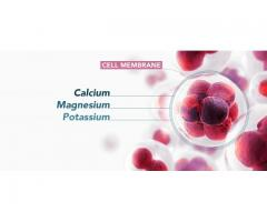 Membrane Integrity Factor® Reviews: Treatment of Multiple Sclerosis, Asthma and Osteoporosis!