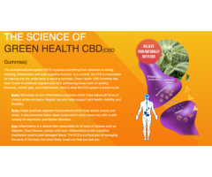Green Health CBD Gummy Bears Reviews - Where Can Your Buy It?