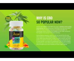 15 Useful Tips From Experts In Jocosa CBD Gummies