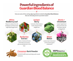 Guardian Botanicals Blood Balance Reviews: Does it Really Work? [2021 Update]