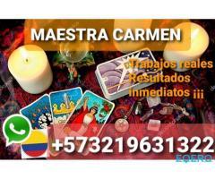 +573219631322 maestra carmen trabajos inmediatos dominios reales