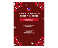 CLASES DE FRANCES POR SKYPE