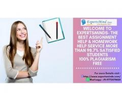 Professional Assignment Help with an Expert Writer at Expertsminds!