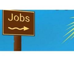 Job Consultancy in Surat   Recruitment Agency in Surat