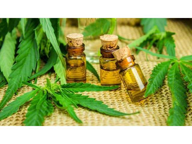 What about Cannaboost Hemp Oil?