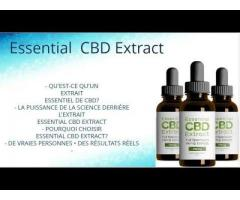 Essential CBD Extract Information: