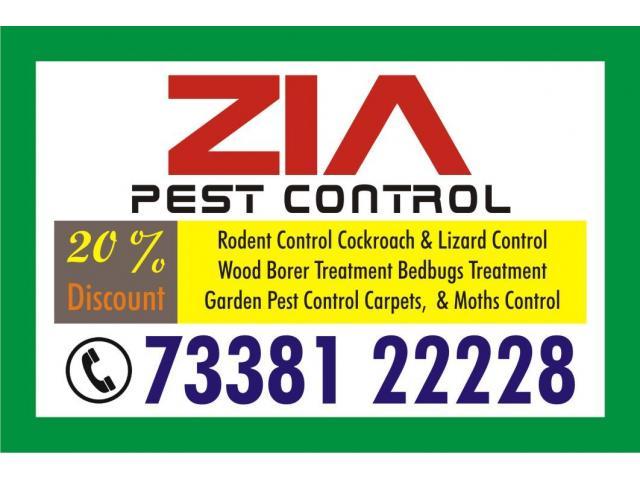 Zia Pest Control | Cockroach Service | 1161 | high-level service