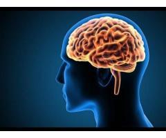 https://sites.google.com/view/cogni-brain-max-order/