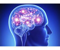 Cogni Brain Max